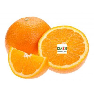 arance-valencia
