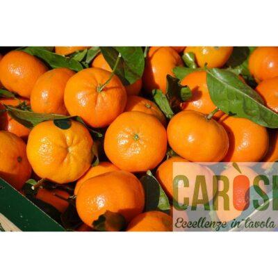 clementine-italiane