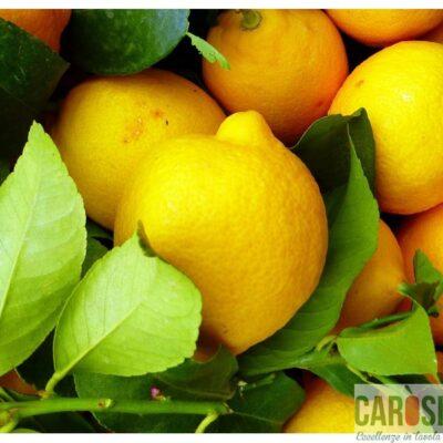 limoni-non-trattati