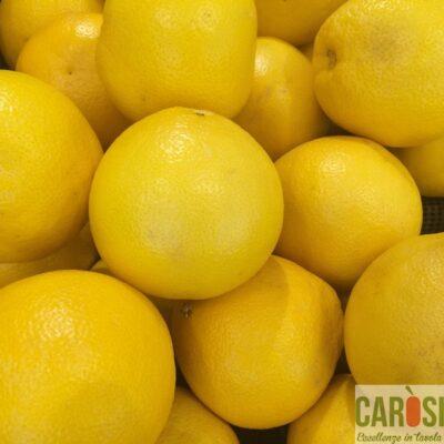 pompelmi-gialli