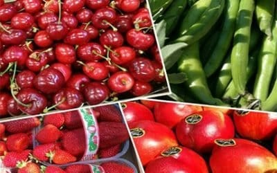 La nostra Frutta Fresca